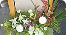 看板下の花